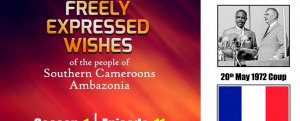 S1E11 - Freely Expressed Wishes of the people of Southern Cameroons