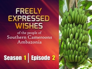 S1E2 - Freely Expressed Wishes of the people of Southern Cameroons